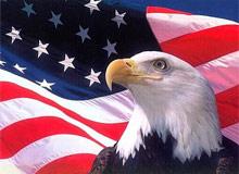 Орел на флаге США, Германии.