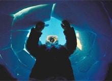 Как эскимосы строят свои иглу?