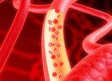 Чем артерии отличаются от вен?