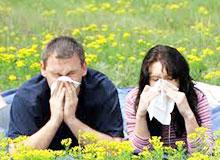 Что такое пыльцевой счет?