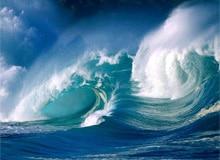 Какие океаны самые большие?