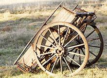 Какими были первые средства передвижения?