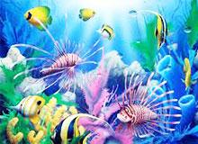 Когда люди начали исследовать подводное пространство?