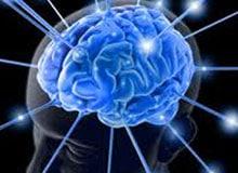 Как мозг хранит информацию?