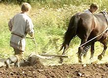 Когда на Руси появились крестьяне?