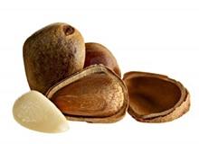 Где растут орехи?