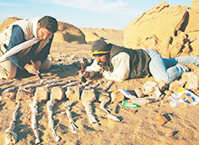 Что изучает археология?