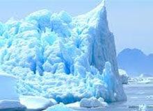 Что случилось с животными в ледниковый период?