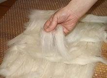 С чего началась обработка шерсти животных?