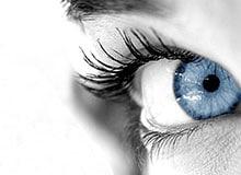 Глаз строение и функции. Из чего состоит глаз, глаз строение анатомия.