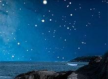 Самая яркая звезда на небе. Сириус звезда самая большая из звезд.