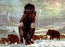 Когда завершился ледниковый период?
