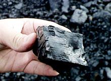 Как образовался уголь?