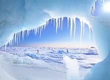 Кто первым исследовал Северный полюс?