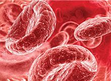 Что такое гемоглобин?