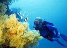 Как изучается океан?