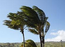 Почему у ветров разные имена?