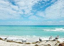 Почему в Атлантическом океане самая соленая вода?