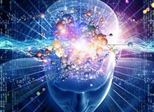 Что такое мозг?