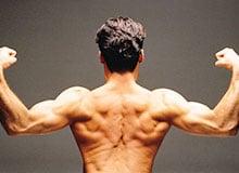 Как работают наши мышцы?