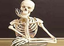 На что способны наши кости?