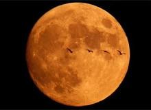 Что происходит во время лунного затмения?