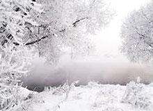 Какую пользу приносит снег?