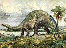 Кто такие бронтозавры?