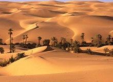 Всегда ли бывает жарко в пустыне?