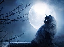 Почему Луна светится?