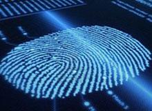 Почему у людей разные отпечатки пальцев?