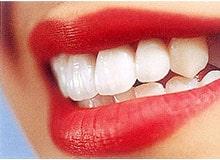 Как растут наши зубы?