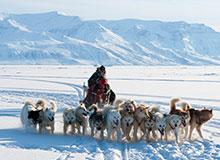Откуда появились эскимосы?
