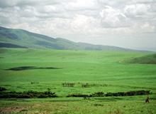 Что такое равнина?