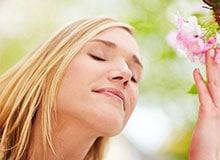 Как человек улавливает запахи?