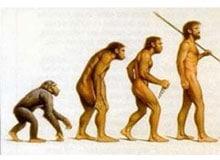 Как идет эволюция?