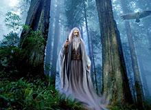 Когда жили друиды?