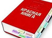 Кто и почему попадает в Красную книгу?