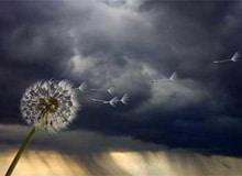 Что такое буря?