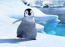 Что такое ледниковый период?