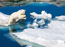 Закончился ли Ледниковый период?