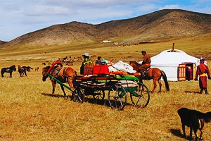 Как живут монгольские кочевники.
